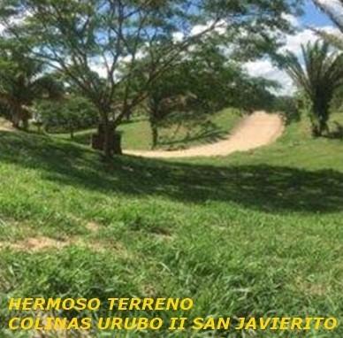 Terreno en Venta COLINAS URUBO II SAN JAVIERITO Foto 1