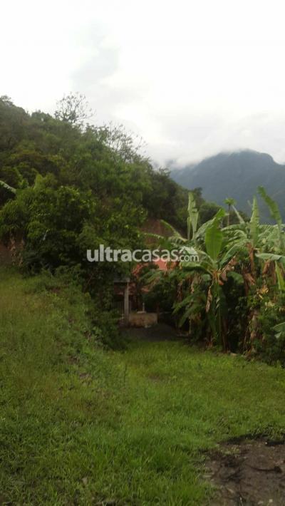 Casa en Venta en Chulumani Chulumani Sud yungas. A 2 hrs de la cuidad de la paz. Sacawaya.