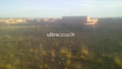 Terreno en Venta en El Alto La Ceja Se vende un terreno X motivos de emergencia de viaje  en la zona VERDE OLIVO en las orillas de achocalla distrito 8 el alto Llamar 76298961