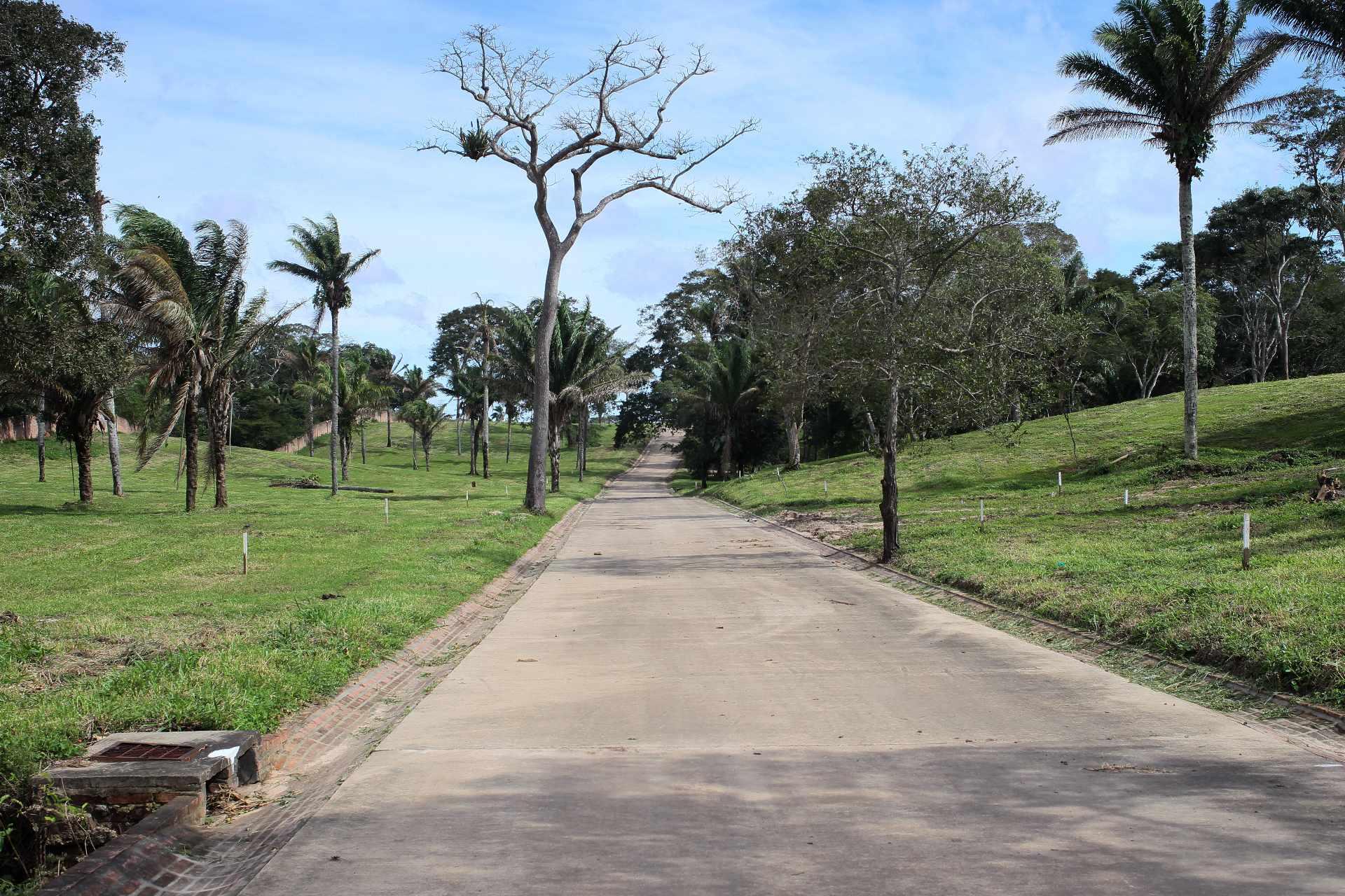 Colinas del Urubó